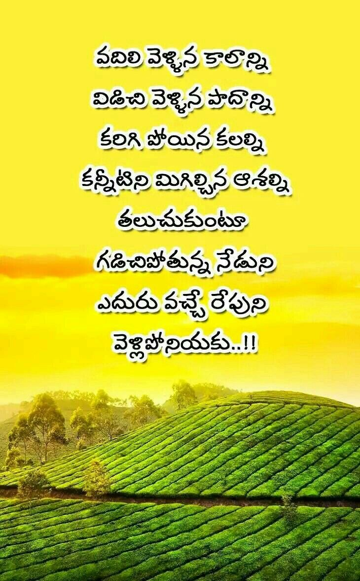 Pin By Abhinav Prabhas On Telugu Quotes Life Quotes Quotes