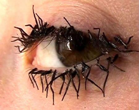 Flies legs eyelash extensions. Oh... um... no thanks.