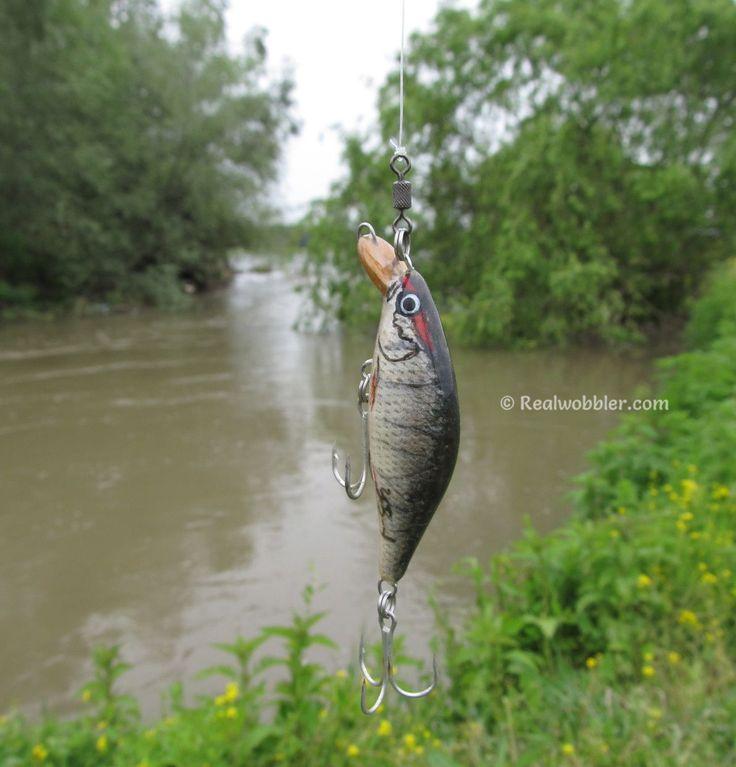 The Realwobbler Fat XS Lure with common roach skin (decoration of perch) did a great job again (s. previous picture). Video coming soon on https://www.youtube.com/user/Realwobbler . #fishing #angling #asp #lures #lurefishing #customlures #handmadelures  #crankbait #angeln #spinnfischen #rapfen #kunstköder #wobbler #pesca #aspio #señuelos #pescadeportiva #риболов #распер #воблер  #жерех #fishinggirl #fishinglady…