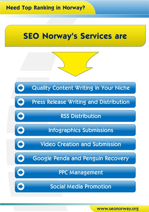 SEO Norway offers Google panda and penguin optimization service.