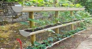 Un potager pour cultiver vos tomates et salades dès le printemps vous fait envie ? Dans un petit jardin, sur la terrasse ou le balcon un carré potager aménagé au sol ou suspendu s'installe partout. Voici des astuces et idées pour faire un potager facilement