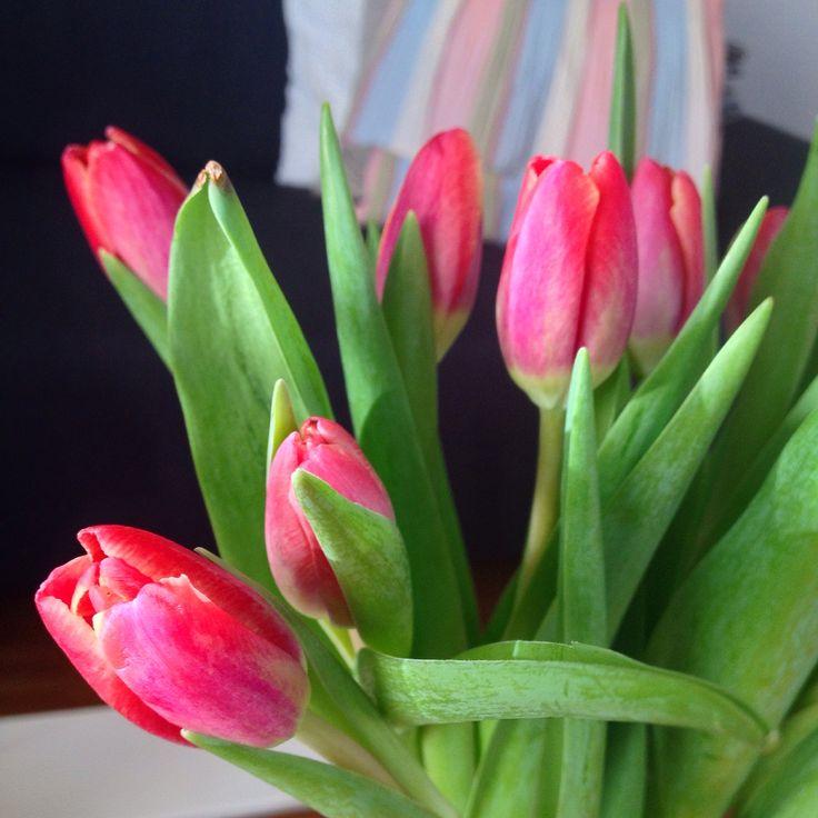 Blumen öffnen mir das Herz!