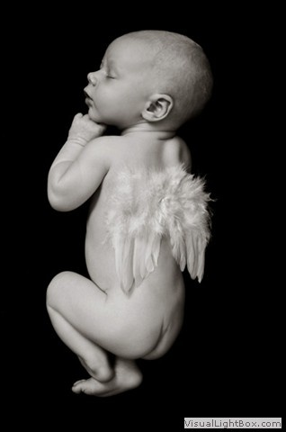 Newborn baby, naked, angel wings, newborn photographer perth adele miles