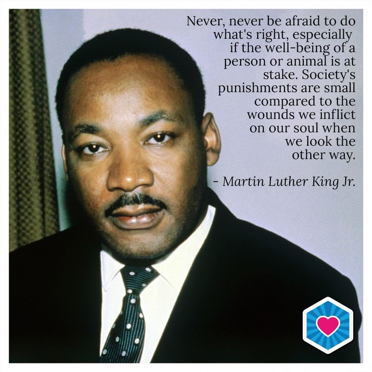 Martin Luther King Jr. on standing up for what is right #MartinLutherKingJr