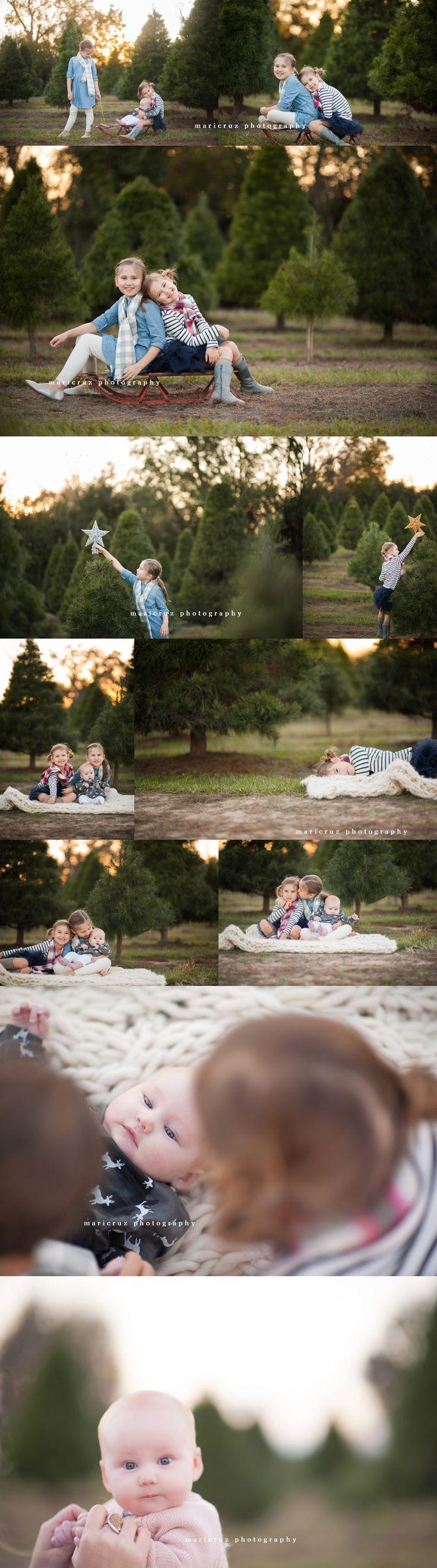 Tree Farm Sessions The Woodlands TX Family Photographer Christmas, tree farm minis, tree farm, child photography, fall minis