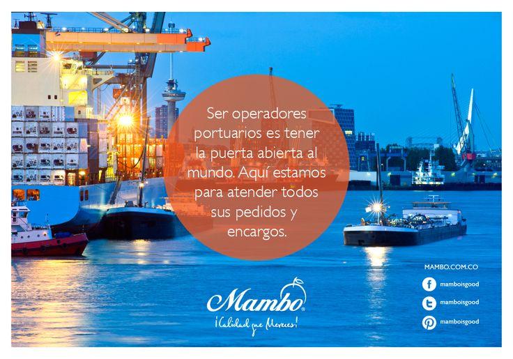Operadores portuarios