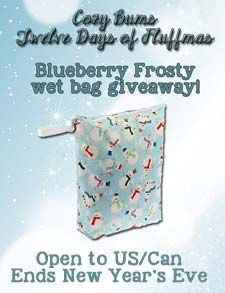 Win a Blueberry Frosty Wet Bag!