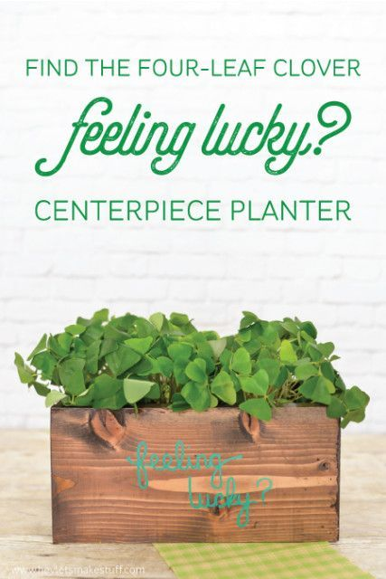 DIY Woodworking Ideas Are you feeling lucky? Find the four-leaf clover in this cute shamrock planter m...