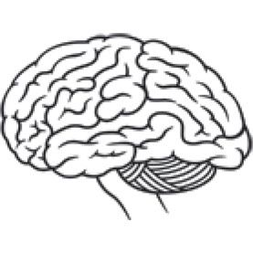 What Causes the Brain to Have Slow Processing Speed, and How Can the Rate Be Improved? - Scientific American