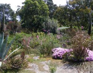 Jardin exotique de Roscoff
