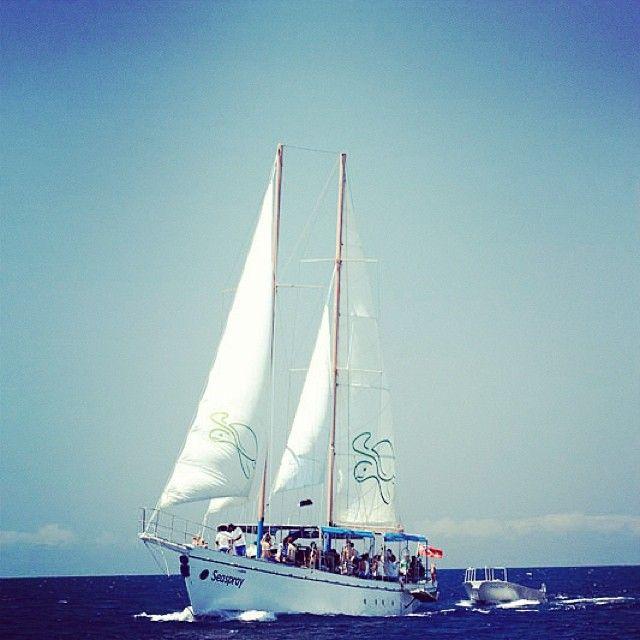 An adventure on Seaspray with South Sea Cruises #seaspray #cruise #fiji #southseacruises #adventure