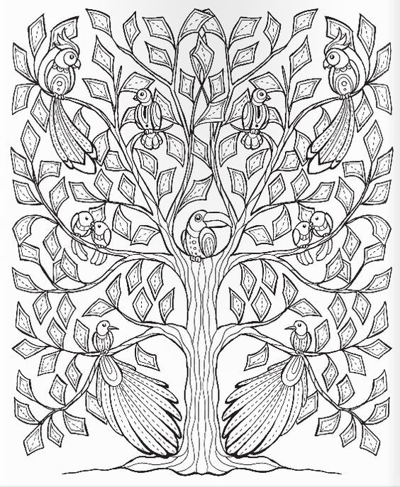coloring pages fruit trees - photo#39