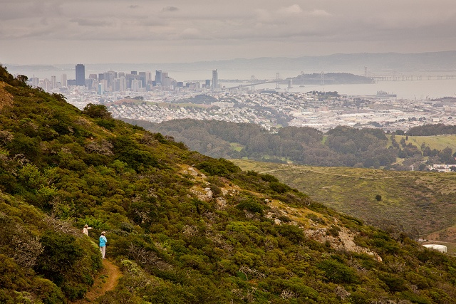 Hike at San Bruno Mountain County Park | San Bruno Mountain by JibberJaber, via Flickr