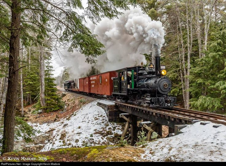 Train snow forest