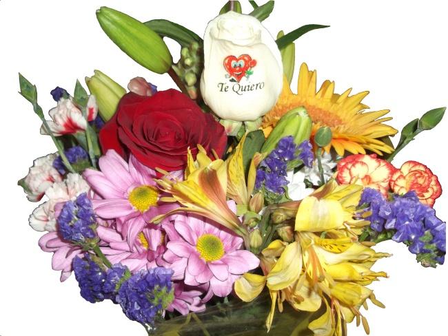 Se acerca el dia de la madre, en Graficflower tenemos a tu disposicion todo tipo de ramos de flores para ese dia tan especial, desde ramos de rosas, ramos de tulipanes, ramos de gerberas, y por supuesto nuestras originales y exclusivas rosas tatuadas, rosas eternas, rosas azules y un largo etc, si quieres sorprenderla ese dia tan especial visitanos en www.graficflower.com