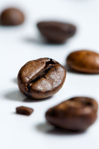 Behold the coffee bean.