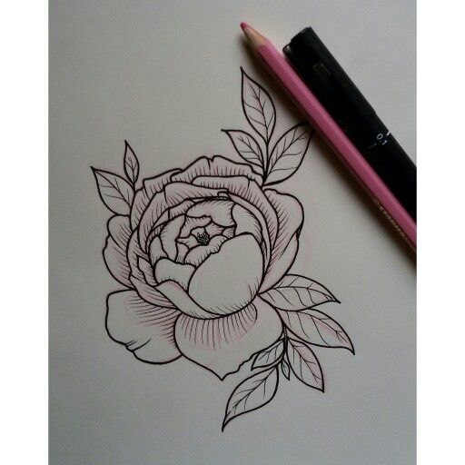 English Rose tattoo sketch // ig: vanessa.core