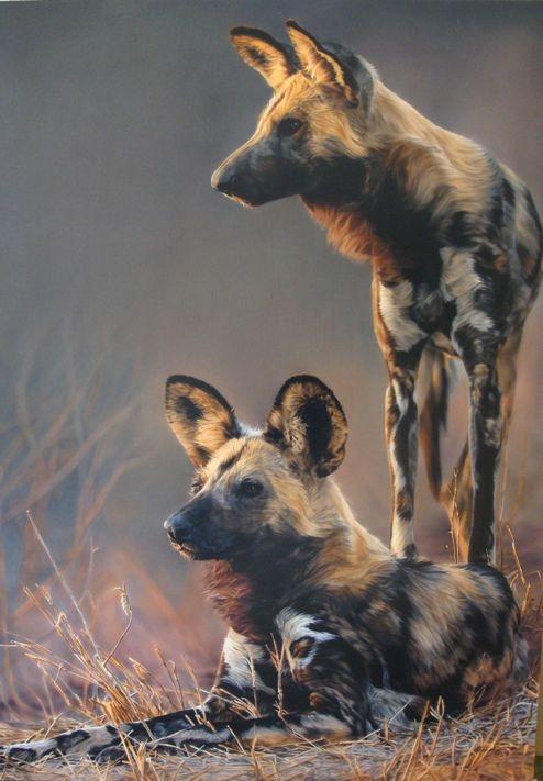 AFRICAN WILD DOG PAINTINGS | Home / Wildlife Art / Sharon Tancrel / Wild Dogs