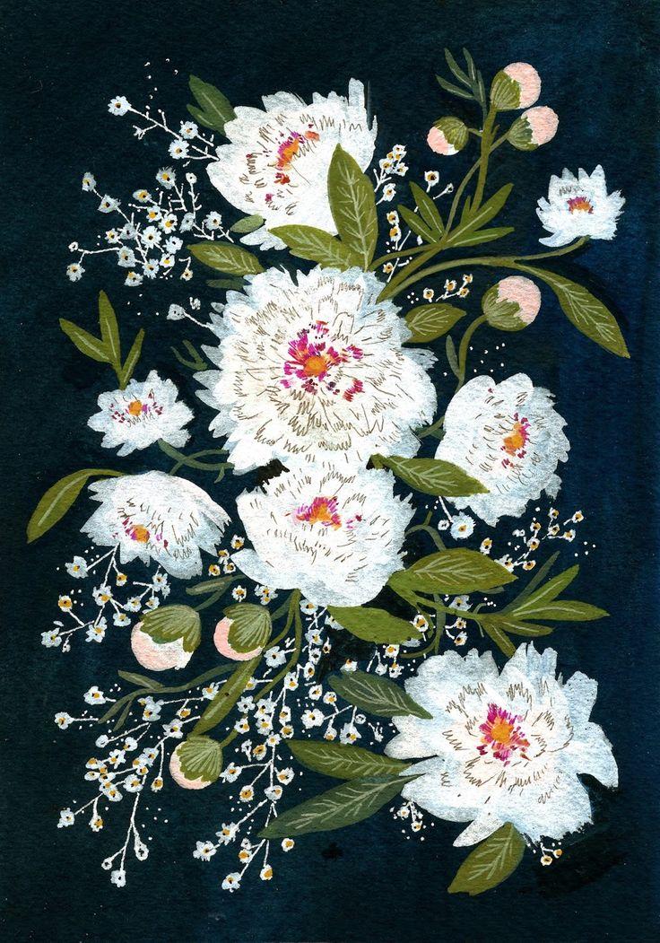 becca stadtlander illustration: white peonies