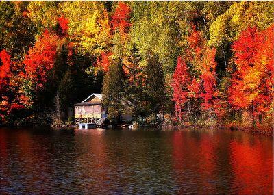 Avoir une cabane au Canada...
