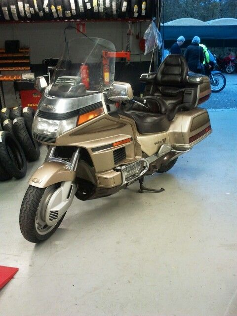 Am I totally crazy? Honda Goldwing Naked Street Fighter