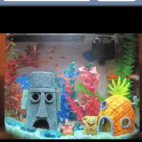 1000 images about spongebob on pinterest. Black Bedroom Furniture Sets. Home Design Ideas