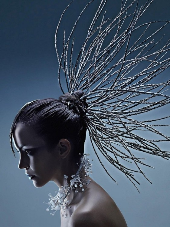 hair branch editorial beauty fashion
