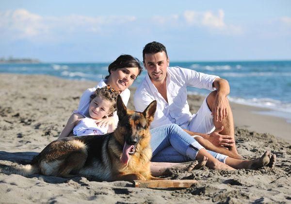 Scott's Police K9 and Family Guard Dogs | Scott's K9