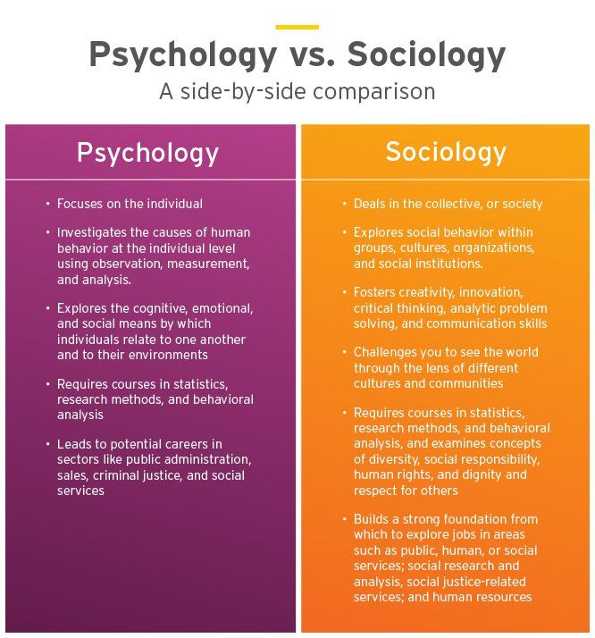 Sociology Vs Psychology Which Bachelor S Degree Psychology