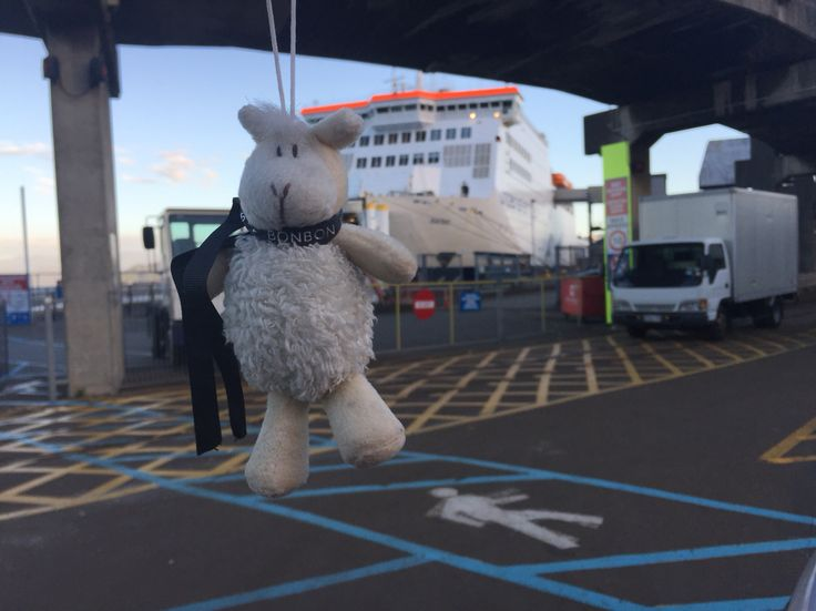Herman about to go on the ferry