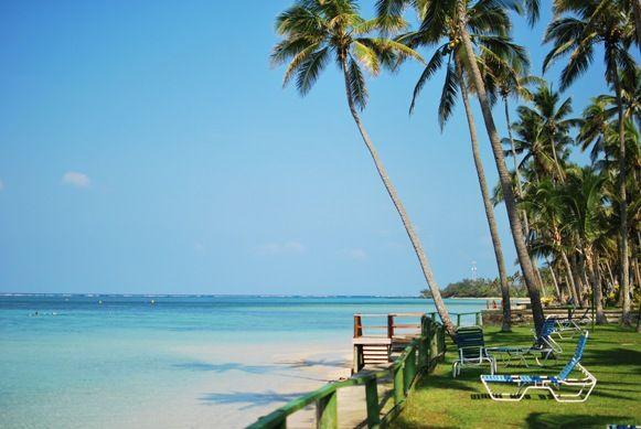 Coconut Husking and Cracking – The Fijian Way