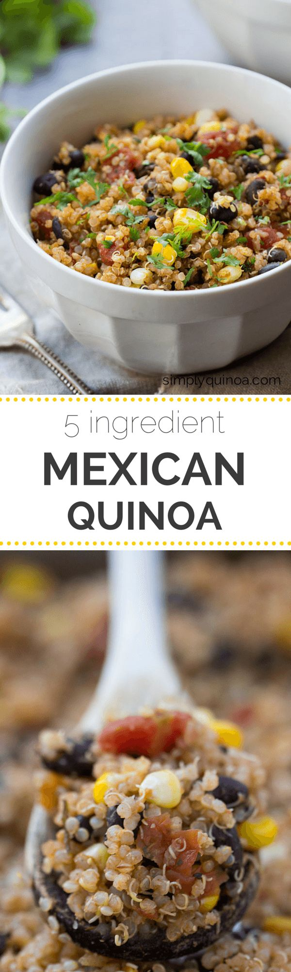 Easy Mexican Quinoa using only 5-ingredients! A quick and healthy dinner everyone will love | recipe on simplyquinoa.com