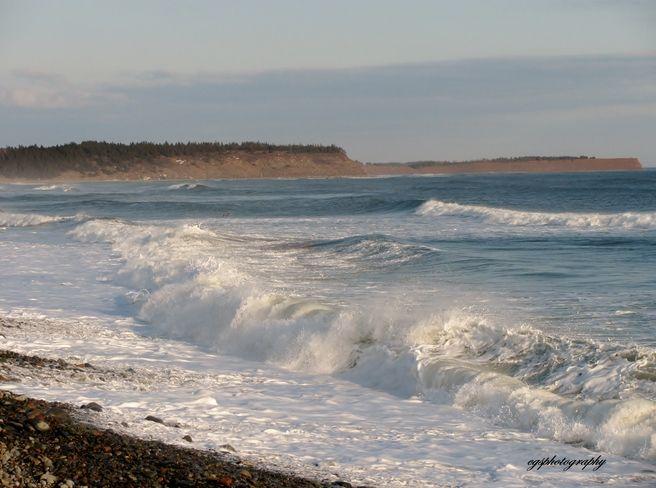 Winter Waves L'Town Beach