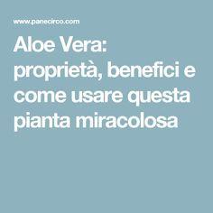 Aloe Vera: proprietà, benefici e come usare questa pianta miracolosa