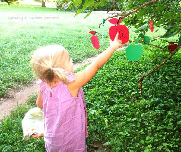 Apple picking for literacy...outdoor activity