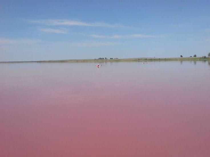 Розовое озеро на Алтае