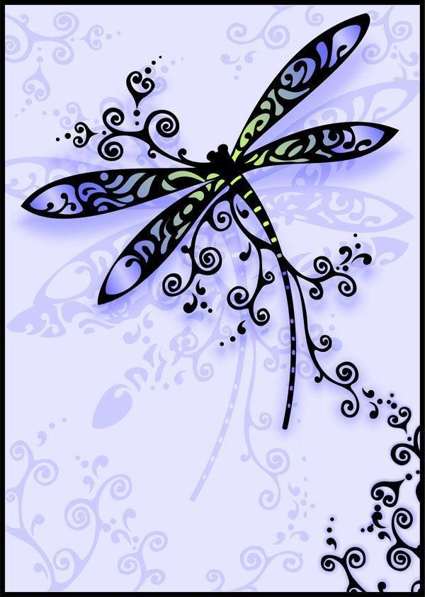 ,ZIA dragon fly