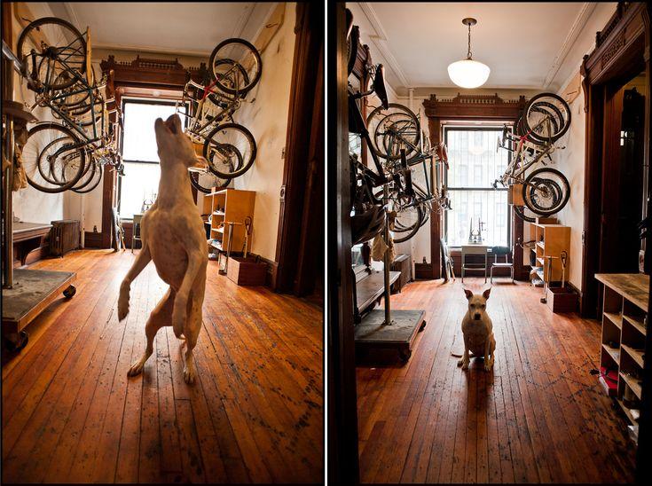 20 best Bike storage at home images on Pinterest | Bike storage ...