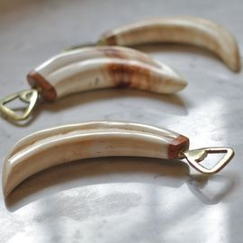 Warthog Tusk Bottle Opener - a stylish addition to any kitchen, our warthog tusk bottle openers are typically 11 inches long. Made from authentic tusks, no one bottle opener is the same. Shop here http://www.diralife.com/warthog-tusk-bottle-opener/
