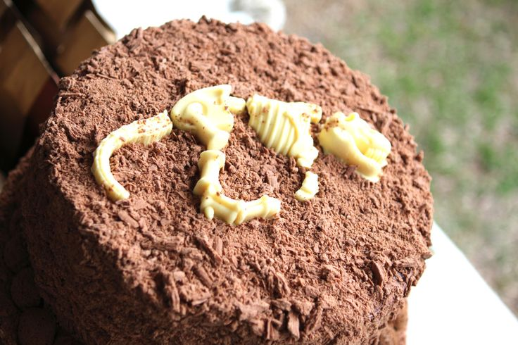 """Dirt"" and Dinosaur Cake - every little boy's dream!: Party Cake, Birthday Parties, Dinosaur Party, Max S Dinosaur, Party Ideas, Little Boys, Birthday Ideas, Dinosaur Birthday Party"