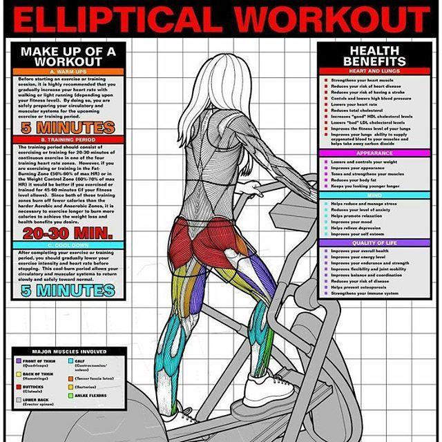 17 Best Ideas About Elliptical Workouts On Pinterest