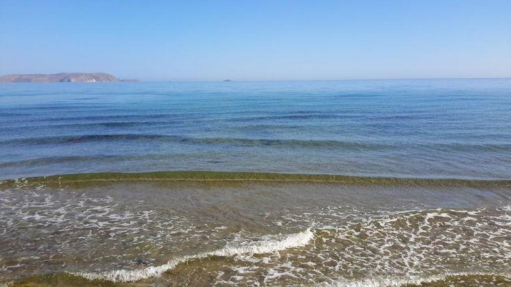 Goodmorning ...@Cretaquarium @DiscoverGRcom @VisitGreecegr @Greek_Spirit @CreteRegion  #cretaquarium #lp