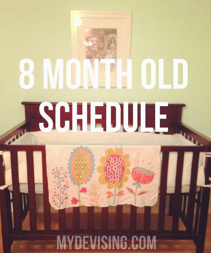 My Devising: 8 month old schedule
