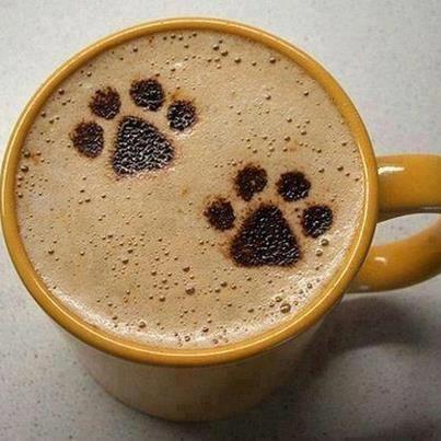 coffee pawsAnimal Lovers, Milk, Coffe Breaking, Coffe Art, Dogs Lovers, Hot Chocolates, Paw Prints, Coffee Art, Drinks