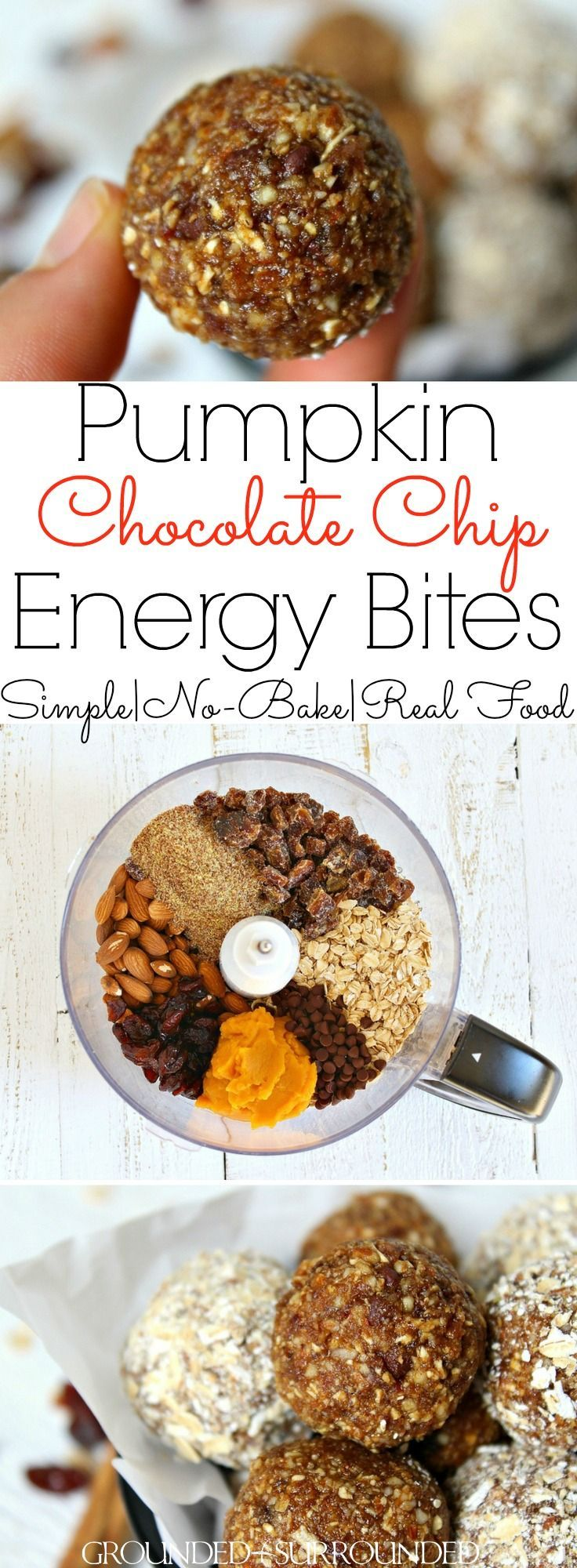 The BEST Pumpkin Chocolate Chip Energy Bites | These healthy no bake snacks are easy to prepare and packed with all the flavors of�