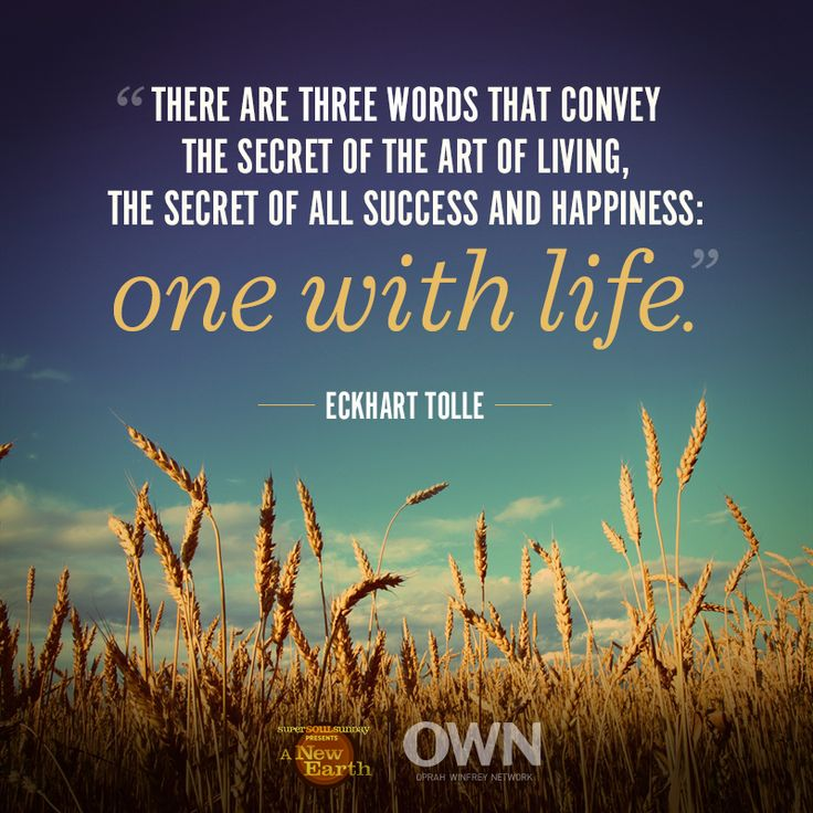 Quotes For Success And Happiness: 257 Best Eckhart Tolle Images On Pinterest