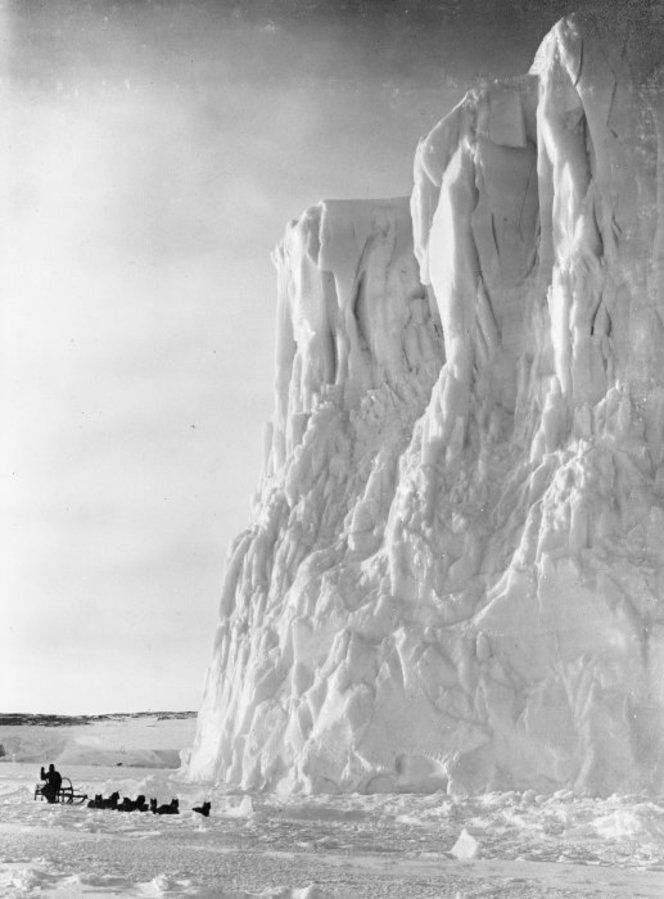 """Sled rounding the point of the Barne Glacier during the British Antarctic (""""Terra Nova"""") Expedition September 1911."""