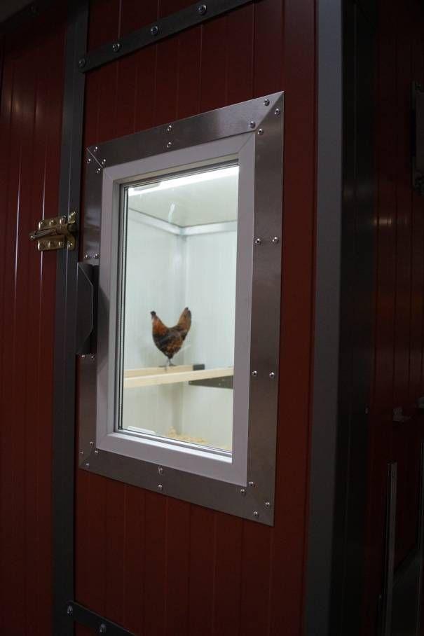 Hühnerstall Türe hat ein Fenster für optimalen Lichteinfall und gute Legeleistung