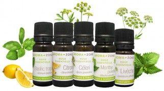 Stimulant physique et digestif, antispasmodique, dépuratif hépatique, digestif et rénal, nausées, coup de fatigue, déprime saisonnière. HE de Menthe poivrée 1 ml (35 gouttes) HE de Livèche1 ml (35 gouttes) HE de Citron 2 ml (70 gouttes) HE de Basilic tropical 2 ml (70 gouttes) HV d'Olive BIO 4 ml 5 gouttes sous la langue avec si besoin du miel ou de la mie de pain. Laisser quelques instants puis avaler. 2 fois par jour, en dehors des repas, en cure de 3 semaines. Pas après 19h.