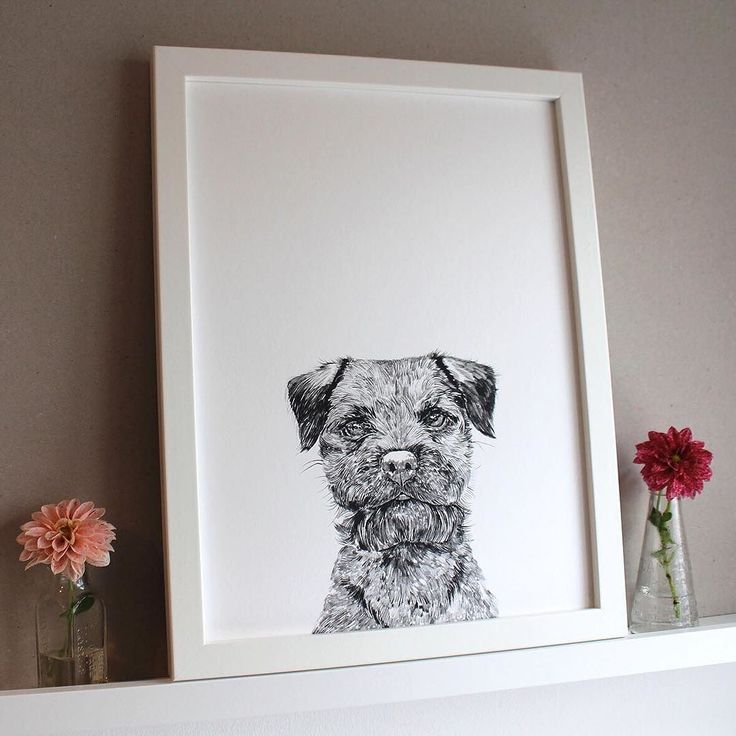For all your pet picture needs! @rosshiers will have her illustrations on sale this weekend in the pop up #illustration #dogs #gifts #mothersday